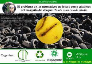 Reciclado de neumáticos y el mosquito del dengue