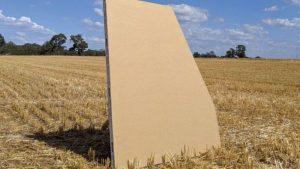 Los daños y riesgos de los paneles de trigo impulsados por Bioceres